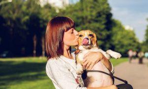 Welcher Hund passt zu mir laut Sternzeichen